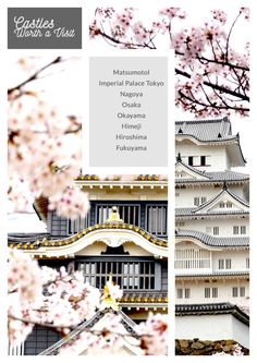Get your travel guide for Japan for travellers
