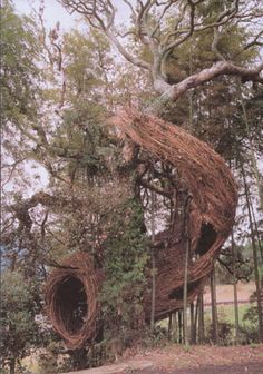 patrick dougherty sculpture  wow wow wow!!!!!!!!!!!!!!!!!!!!!!!!