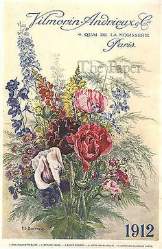 1912 Antique Vtg French Vilmorin Andrieux Cie Paris 6 x 9 Seed Catalog Cover | eBay