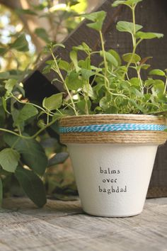 "OutKast's ""Balms Over Baghdad"" by PlantPuns on Etsy"