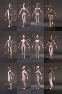 10 Tips on Anatomy for 3D Artists