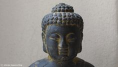 Shivani Kapuria Blog Yoga Meditation, Ayurveda, Buddha, Statue, Blog, Sculptures, Sculpture