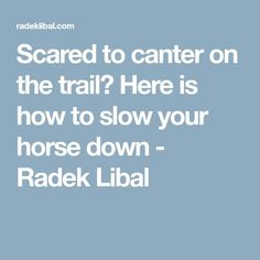 Scared to canter on the trail? Here is how to slow your horse down - Radek Libal