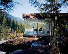 glass house in the woods