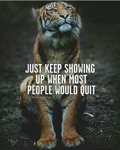 Fitness Motivation Quotes For Men Inspiration Life Ideas Fitness Humor, Fitness Motivation Quotes, Life Motivation, Tiger Quotes, Lion Quotes, Wisdom Quotes, Me Quotes, Funny Quotes, Qoutes