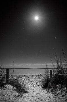 Moon And Stars Over Beach  Sanibel island, Florida  http://1-greg-mimbs.pixels.com/featured/moon-and-stars-over-beach-in-black-and-white-greg-mimbs.html