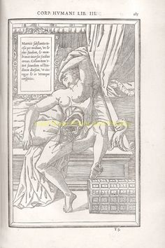 latest addition Charles Estienne 1545o