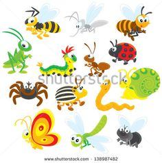 Collections of insects with fly, butterfly, dragonfly, snail, worm, potato beetle, spider, ladybug, ant, caterpillar, grasshopper, bee, wasp and mosquito - stock vector