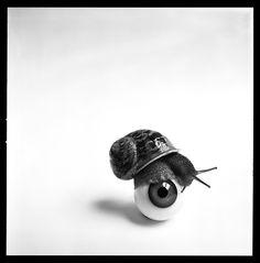 Snail & Eye, 1956 - Brian Duffy