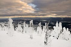 Snowmobiling in the Swan Mountains
