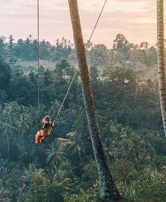 Swinging over the jungle in Bali