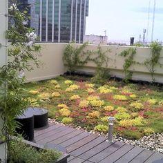techo verde greenB/120 sostenible Patio, Outdoor Decor, Green, Home Decor, Green Roofs, Decoration Home, Room Decor, Home Interior Design, Home Decoration