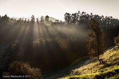 Una fría mañana de otoño ~ Fotografía Juanjo Mediavilla