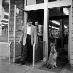 A big dog waiting in the automatic door into a store while two men walk out the other day while looking at him. Street Photography 5 | Vivian Maier Photographer