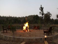 Wildflower Resort  - Madhya Pradesh,India Madhya Pradesh, Wild Flowers, Buildings, Places To Visit, India, Outdoor Decor, Travel, Home, Goa India