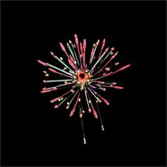 For Independence Day! The Birth of Light brooch by Wallace Chan.