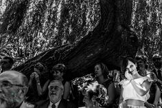 Fotógrafos de boda en León Concert, Photography, Wedding, Bodas, Tulle, Feathers, Fotografie, Mariage, Photograph