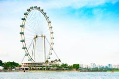 Singapore Tour Packages from Cox & Kings India  Enjoy your visit to Singapore with Cox & Kings. Explore Singapore's night safari, Sentosa island including cable car underwater world, dolphin lagoon and the most popular attractions are Jurong Bird Park and Singapore Zoological Gardens on this tour. Singapore is the place to have fun at any time of the year.   http://www.coxandkings.com/flexihol/far-east/singapore_extravaganza_-_no_guide/tourId/23288/category/5