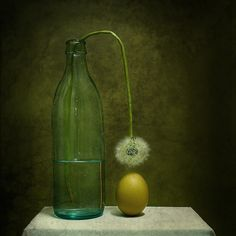 15 Smashing Examples of Still Life Photography - Silky Designs ...