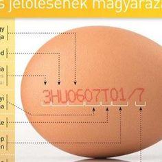 Ha fontos az egészsége ezeket a tojásokat kerülje el!