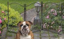 Adjustable Metal Pet Gate