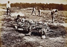 Cold harbor was one of the most violent battles of the Civil War ... and some tormented souls still roam its bloodied soil.