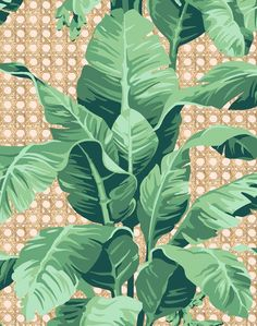 'Sunnylands Palm' Wallpaper by Nathan Turner - Peach - Removable Panel