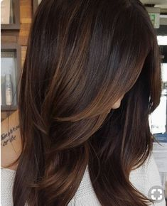 Trendy Hair Color Highlights : Are you looking for hair color dark hairdos See our collection full of hai Medium Hair Styles, Short Hair Styles, Chestnut Hair, Dark Hair With Highlights, Brown Hair With Lowlights, Chestnut Highlights, Partial Highlights, Balayage Brunette, Auburn Balayage