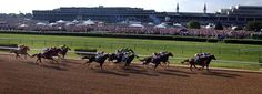 Top 10 Derby Tips - new2lou.com #kentuckyderby #kyderby #new2lou