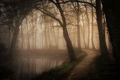 Between Night and Day by Nelleke.deviantart.com on @DeviantArt