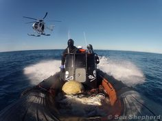 Sea Shepherd Helicopter follows the Small Boat Crew on it's way to confront the Yushin Maru 3    Photo: Billy Danger / Sea Shepherd