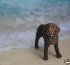 OOAK Realistic Chocolate Labrador Retriever Dog Handmade Mini Dollhouse 1:12 Scale Handsculpted by Reve