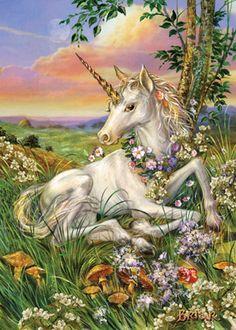 Newborn Unicorn