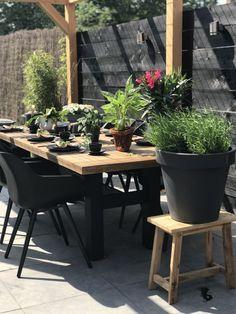 Small Courtyard Gardens, Small Courtyards, Backyard Pergola, Outdoor Landscaping, Outdoor Living Areas, Outdoor Rooms, California Backyard, Budget Patio, Rooftop Garden