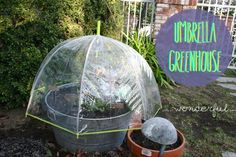 Glue old CD cases together to make a seriously inventive structure for the garden