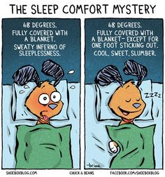 The problem with sleep on http://www.drlima.net