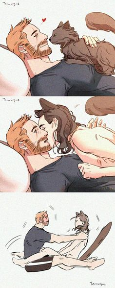 Hey, Bruce I think my cat was photographed by gamma rays || ThorKi AU || Cr: teamorgue