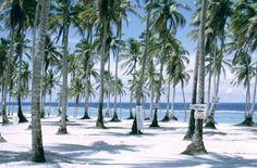 Guam USA beach