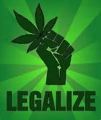 Buy Marijuana Seeds For Sale Online Seeds For Sale, Buy Weed Online, Smoking Weed, Ganja, California, Hemp, Pineapple Express, Weed, Funny Wallpapers