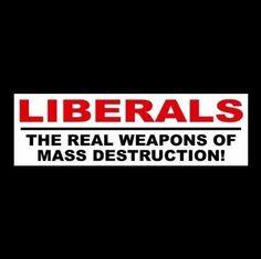 Image result for LIBERAL DESTRUCTION