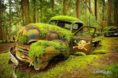 The symbol on the door tells of the trucks fate. It is being consumed by both rust and Mother Nature....