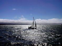 Sailing near San Francisco's Golden Gate.