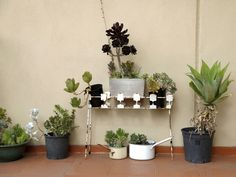 """Roof deck greenery at Gill Hutchison's Collingwood home from """"What's in your bedroom..."""" Photo by Eugenia Lim."""