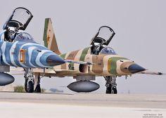 Northrop F5E Aggressors