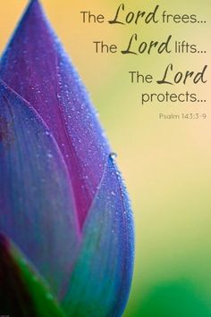 †~ Psalm 143:3-9 ~†