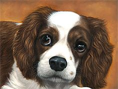 http://www.classicpetportraits.com/gallery_dogs.html#