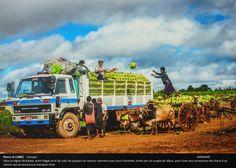 2015 Douzième festival de la photo La Gacilly - Nourrir la planète / Collectif Image sans Frontière.