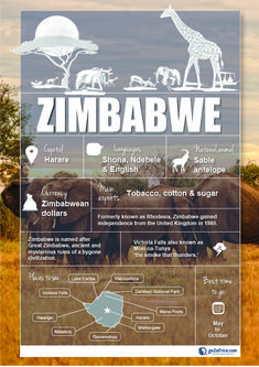 Zimbabwe Country Information infographic. #Africa #Travel
