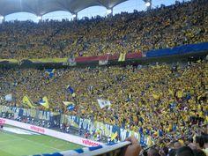 petrolul ploiesti fans Ale, Dolores Park, Soccer, Sports, Travel, Hs Sports, Futbol, Viajes, Soccer Ball