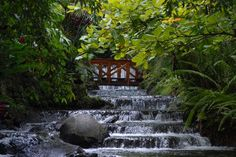 Tabacon Grand Spa Thermal Resort Costa Rica